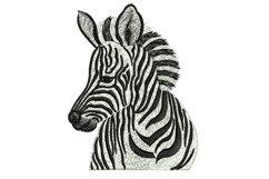 Zebra machine embroidery designs Product Image 1
