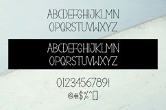 Dotcom - a quirky decorative font Product Image 2