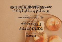 Ratuiga - A Beauty Script Font Product Image 6