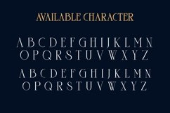 Goord - Modern Serif Family Product Image 2