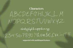 Minimalisty - Signature Style Font // Web Font Product Image 4