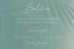 Baldive Signature Monoline Font Product Image 6