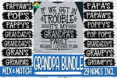 Trouble - It's My Grandpa's Fault -BUNDLE - 29 Names Incl Product Image 1