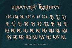 Vicky Christina - Chic & Stylish Ligature Serif Font Product Image 3