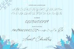 Winterlady Beautiful Script Font Product Image 6