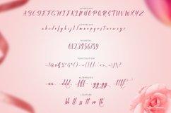 Web Font Rafifi Script Product Image 5