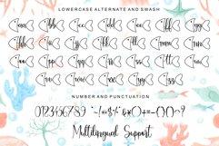 Fishbone - Modern Calligraphy Font Product Image 4
