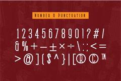 Medan Slab Condensed Slab Serif Font Webfont Product Image 3