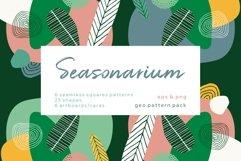 Seasonarium. Abstract botanical pattern and graphic set. Product Image 1