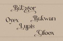 Revivalisem Sans Serif Font Product Image 14