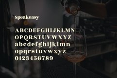 Speakeasy | A Classy Serif Product Image 2