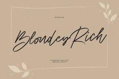 Blondey Rich Signature Script Font Product Image 1