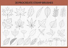 30 Leaves Stamp Brushes for Procreate, Autumn Collection Product Image 2