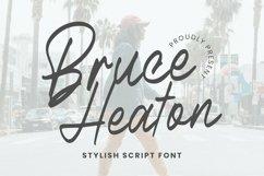 Web Font Bruce Heaton Font Product Image 1