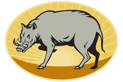 Pabirusa Wild Pig Attack Product Image 1