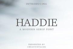 Haddie Modern Serif Font Family Product Image 1