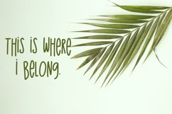 The Island Sans Font Product Image 4