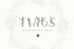 Twigs Font Product Image 1