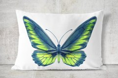 34 Hand-Painted Watercolor Butterflies Product Image 6