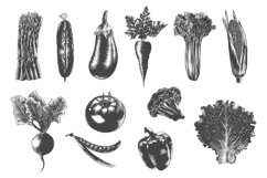 Collection of hand-drawn vegetables Product Image 2