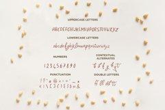Cooking Papa - handwritten font Product Image 2