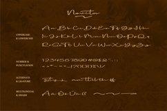 Novita | A Beauty Signature Font Product Image 4