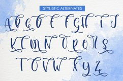 Abnormality An Upper Case and Script Font Product Image 5