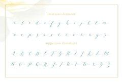 Joleni Font - modern elegant calligraphy Product Image 2