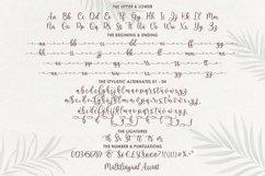 Sefilya   Beauty Script Product Image 5