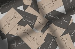 Panelines - Script Handwritten Font Product Image 4