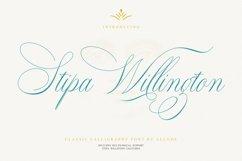 Stipa Willington Product Image 1