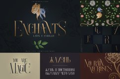 Bestseller Font Collection Vol.02 Product Image 6