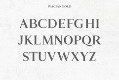 Wacian Serif Font Family Pack Product Image 4