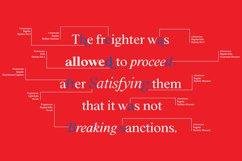 BD Megalona   Serif Font Family Product Image 6