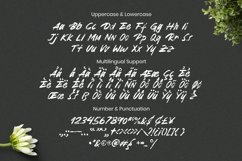 Web Font Minnesota Font Product Image 5