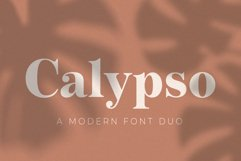 Calypso // A Modern Font Duo Product Image 1
