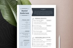Professional Editable Resume Cv Template in Word Apple Pages Product Image 4