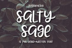 Web Font Salty Sage- A Fun Hand-Written Font Product Image 1
