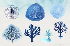 Ocean Life Watercolor Illustrations Product Image 7