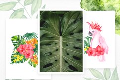 Pretty Garden. Watercolor collection Product Image 5