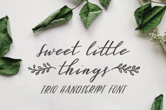 Sweet Little Things TRIO font - Script, Caps & Ornaments Product Image 1