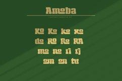 Amoba Product Image 5
