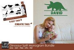 Dinosaur Split Monogram Bundle Product Image 2