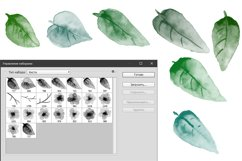 23 hand painted floral watercolor brushes for Photoshop Product Image 3