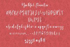 Youthful - Handwritten Script Font Product Image 8