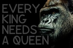 Gorilla  Product Image 2