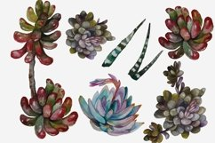 Succulents and Cacti Watercolor Clip Art Set Product Image 3