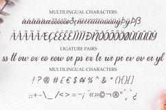 Amaryllis - a modern calligraphy typeface with swashes Product Image 3