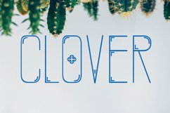 CLOVER FAMILY Product Image 3