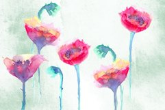 Watercolor poppies Product Image 3